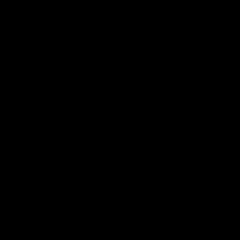 Pictogramme représentant un non-voyant, sa cane et son accompagnateur pour l'accessibilité